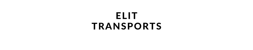 Navette aeroport Lyon Elit Transport