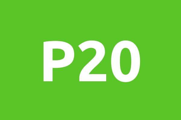 P20-1594129380-medium