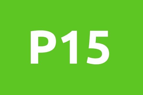 P15-horizontal