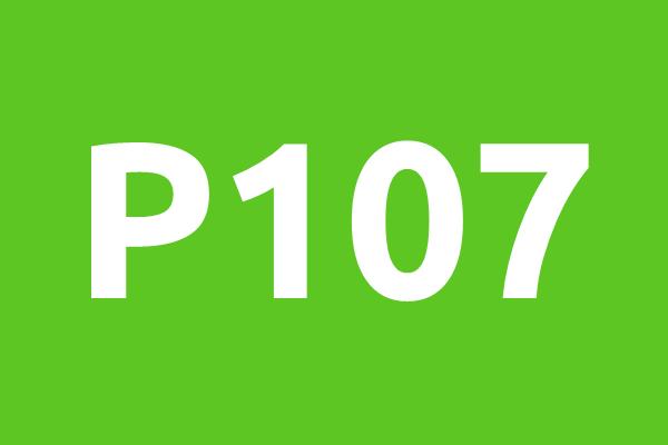 P107-horizontal